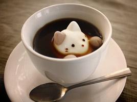 cafecat.jpg