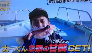 get_amadai320.JPG