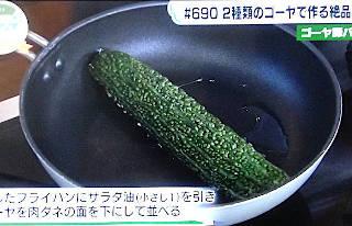 gooya_flypan320.JPG