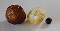 snakefruit.jpg
