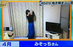 sp_miso.jpg