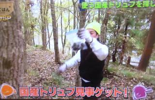 truffe_taichi320.jpg